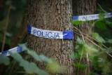 37-latka urodziła dziewczynkę i zakopała noworodka w lesie?