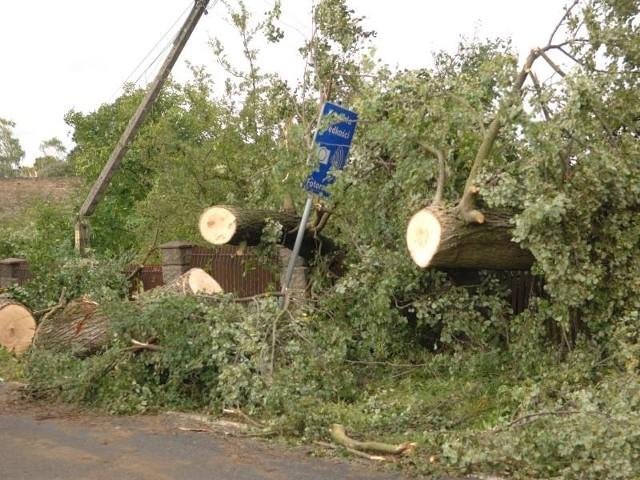 Przy drogach wciąż widać skutki nawałnic. Drzewa są usunięte z jezdni, ale wciąż zalegają na poboczach. Widać, jakie straty wyrządziła nawałnica.