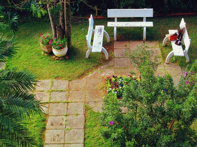 Przedwiosenne prace w ogrodzie. Zadbaj o drzewa i krzewyPrzedwiosenne prace w ogrodzie. Zadbaj o drzewa i krzewy