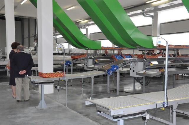 Baza wyposażona jest w linie do sortowania i pakowania owoców.