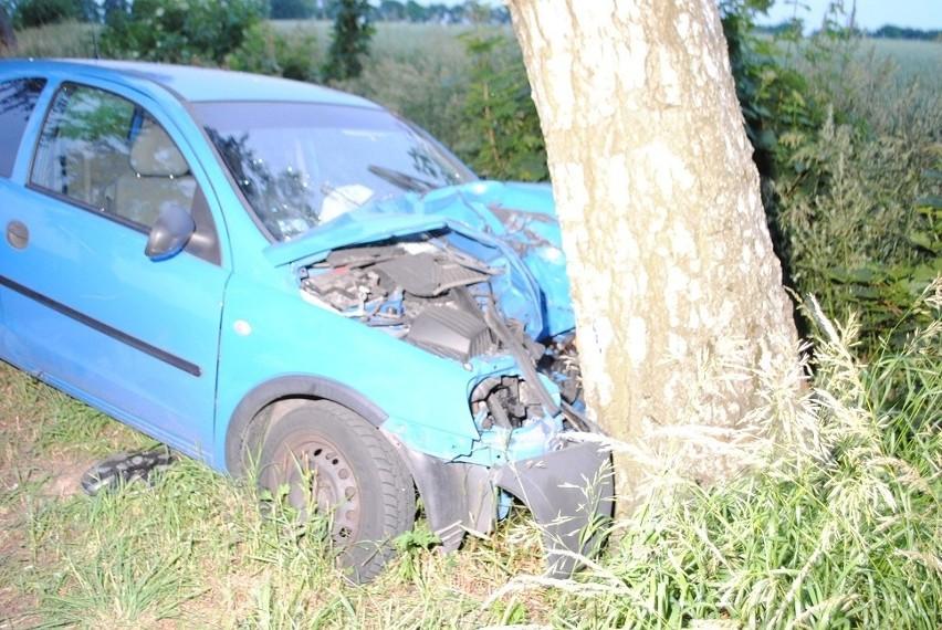 Do tragicznego wypadku doszło na drodze asfaltowej między Chlebówkiem w gminie Stara Dąbrowa a Sokolnikami w gminie Maszewo