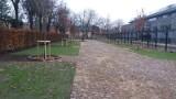 Pierwszy zielony parking w Łodzi zostanie oddany do użytku na początku 2019 r. Naprawdę będzie na nim zielono