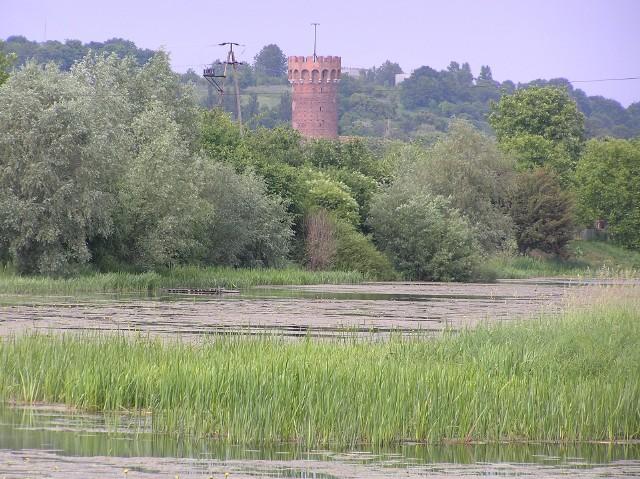 W średniowieczu Wisła podchodziła aż pod zamek krzyżacki w Świeciu. Po regulacji wielkiej rzeki jej brzeg został odsunięty daleko na wschód, ale do dziś można oglądać starorzecze