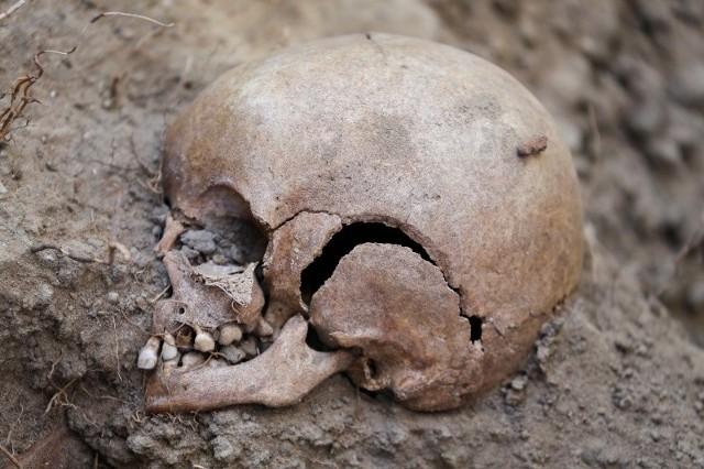 Instytut od lipca 2013 roku na terenie Aresztu Śledczego prowadził prace ekshumacyjne
