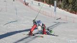 Podhale. Na narty choćby dziś! Wystarczy by mieli licencję sportowca... jakiegokolwiek związku