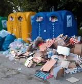 Ustawa śmieciowa: Biją się o nasze śmieci! Każdy chce je wywozić