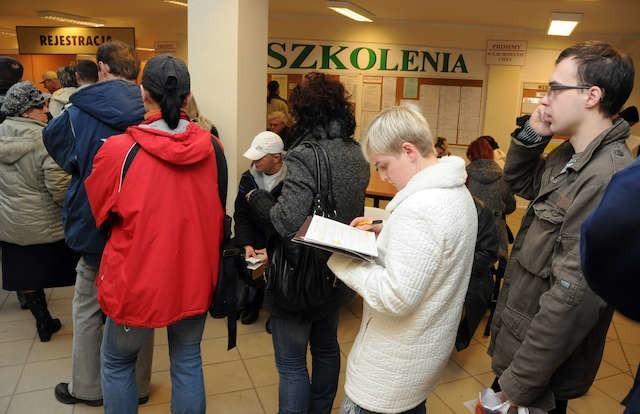Wybrane w przetargu konsorcjum firm miało poprawić sytuację na rynku pracy w województwie.
