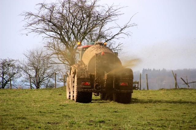 Pestycydy są substancjami zaprojektowanymi po to, żeby zabijać żywe organizmy.