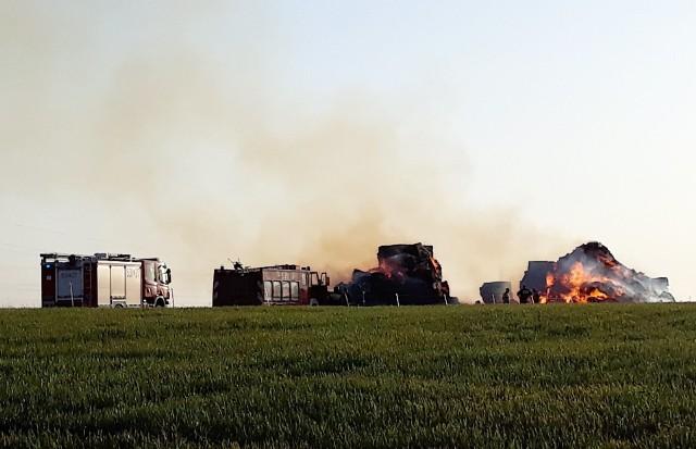Pożar przy drodze prowadzącej do podstargardzkich Grzędzic