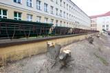 Przy Zespole Szkół nr 1 w Rzeszowie powstanie nowa hala sportowa. Rzeszowianie pytają, czy rosnące tam drzewa musiały pójść pod topór