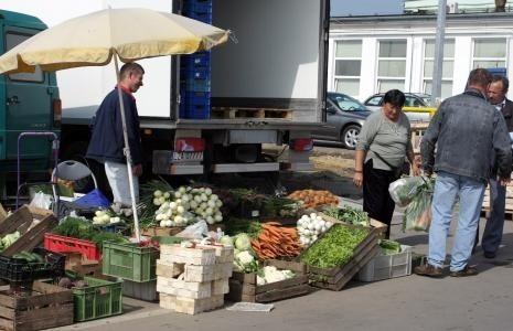 Zestawiamy ceny owoców i warzyw w 2013 i 2014. Zobacz, co potaniałoFasola szparagowa - na chwilę obecną kosztuje na giełdzie Agrohurt S.A. 3 zł za kilogram i jest tańsza względem roku poprzedniego o 2 złote na kilogramie.