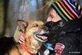 Schronisko w Toruniu poszukuje nowego domu dla psów. Nero i Murzynek, nierozłączni przyjaciele szukają domu