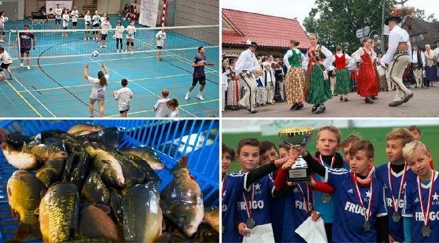 W ramach tegorocznego Budżetu Obywatelskiego Województwa Małopolskiego 12 mln zł rozdzielono głównie na zadania sportowe i kulturalne.