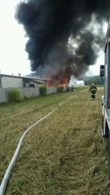 Pożar zakładu w Rytwianach. Sześć zastępów strażaków w akcji [ZDJĘCIA]
