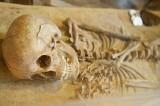Muzeum Archeologiczne Środkowego Nadodrza zaprasza na niezwykłą podróż w czasie [ZDJĘCIA]
