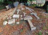 Grupa pasjonatów odszukała przedwojenne krzyże z cmentarza w Smołdzińskim Lesie [zdjęcia]
