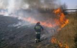 Pięć pożarów jednej nocy w Mysłowicach. Kto jest sprawcą podpaleń?
