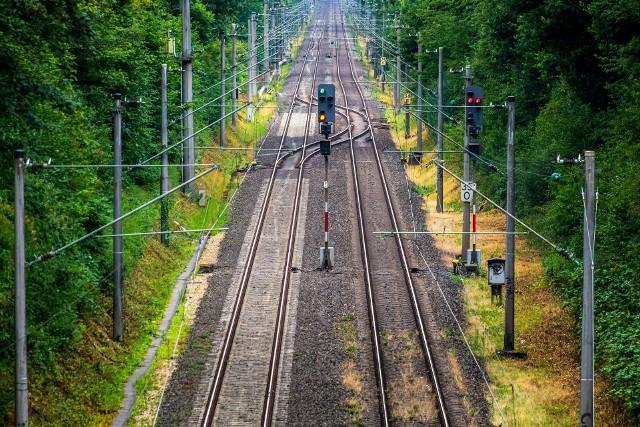 Pociągiem dojedziemy do lotniska w Pyrzowicach. Wzdłuż linii zasadzą drzewa, będą budki dla sów, dzięciołów