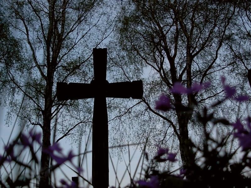 Cmentarz z I wojny światowej w Krempnej.