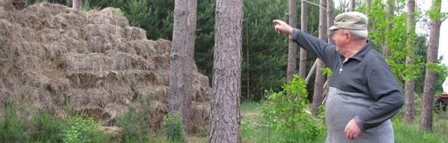 Bronisław Młynarski pokazuje stertę słomy, na której ma legowisko tajemniczy kot.