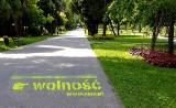 Wolność, równość, miłość, praworządność… Dziesiątki napisów na chodnikach w Oświęcimiu. Akcja Oświęcimskiego Instytutu Praw Człowieka