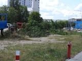 Wycinki drzew przy Kaczorowskiego. W tym roku ma ruszyć budowa biurowca. Czyli koniec z dzikim parkowaniem [ZDJĘCIA]