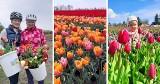 Sam zerwij dla siebie tulipany! W ogrodzie w Cedrach Wielkich można zwiedzać, zachwycać się niezwykłym miejscem i ... kupować [zdjęcia]
