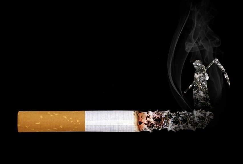 Palenie tytoniu podczas jazdy...