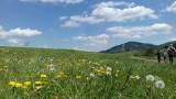 Wiosna w górach zachwyca! A to niedaleko Krakowa [ZDJĘCIA]