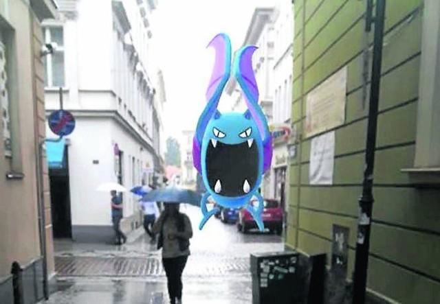 Niebieski animowany nietoperz, który lata na ulicy, to nic zaskakującego. Gra Pokemon GO bije rekordy popularności
