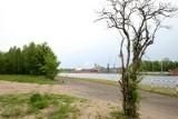 Władze Gdańska chcą, by Orlen zaangażował się w uporządkowanie zanieczyszczonego terenu w Nowym Porcie