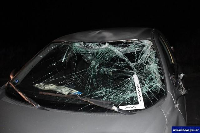 W weekend na terenie powiatu węgorzewskiego na trasie Gębałka - Stregiel oraz Tarławki - Kamionek Wielki doszło do dwóch zdarzeń drogowych z udziałem łosi. Najpierw w sobotę, 5 października, kierująca pojazdem Alfa Romeo 24-letnia mieszkanka Węgorzewa, uderzyła w zwierzę, które wtargnęło na jezdnię.