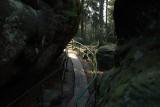 Oto najpiękniejsze szlaki turystyczne Dolnego Śląska. Byliście tam? (ZOBACZ)