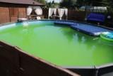 Mężczyzna utopił się w basenie ogrodowym na terenie działek przy ul. Milionowej w Łodzi. Sąsiedzi są wstrząśnięci tragedią ZDJĘCIA