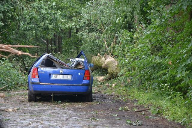 W Kuźni Raciborskiej obowiązuje całkowity zakaz wstępu do lasu, ze względu na niebezpieczeństwo związane z połamanymi konarami. Wielkie szkody lasom wyrządziła wczorajsza nawałnica. Najgorzej jest na odcinku DW922 z Nędzy do Kuźni. To tam wczoraj strażacy musieli najpierw uporać się z powalonymi drzewami, aby dostać się do poszkodowanego. Mężczyzna uciekł z samochodu w momencie, gdy przewróciło się na niego drzewo. Niestety, został uderzony konarem. Strażacy za pomocą pił wycięli sobie drogę, by dostać się do mężczyzny. Kolejną drogę musieli wyciąć, aby przejść z mężczyzną na polanę, gdzie wylądował po niego śmigłowiec ratowniczy. Na szczęście wszystko zakończyło się szczęśliwie