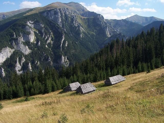CiemniakTo jeden z dwutysięczników w Tatrach Zachodnich. Znajduje się w grani głównej Tatr Zachodnich, pomiędzy niewielką Mułową Przełęczą (2067 m), oddzielającą go od Krzesanicy, a wybitną Tomanową Przełęczą (1686 m). Wierzchołek Ciemniaka to płaska i rozległa kopuła szczytowa.