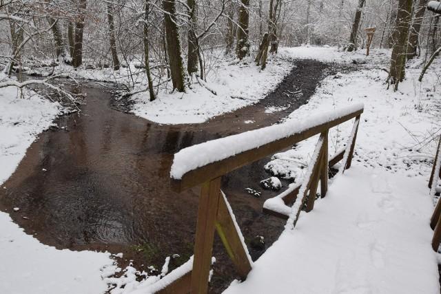 Zapraszamy na fotograficzną (nie tylko) zimową wycieczkę do Krainy Rummela w gminie Miastko. To obszar ze szlakiem turystycznym wytyczonym wiele lat temu przez Nadleśnictwo Miastko. Każdy, kto tu zagości, znajdzie się w pięknych okolicznościach przyrody m.in. z wąwozem czarownic, słonecznym duktem, marzankowym jarem, źródełkiem Hamer (z pozostałościami dawnych obiektów), kapliczką św. Huberta, trzema jeziorami, zbiornikiem retencyjnym oraz strumykami.