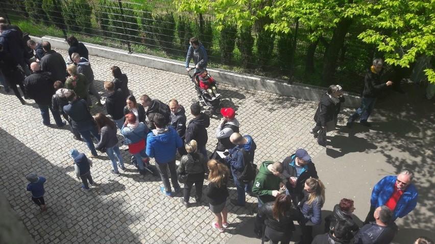 Olbrzymie kolejki do zoo i korki na placu Grunwaldzkim (ZDJĘCIA)