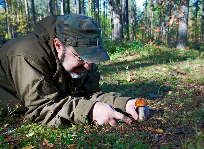 Grzybiarz znalazł 30 pocisków z II wojny światowej!