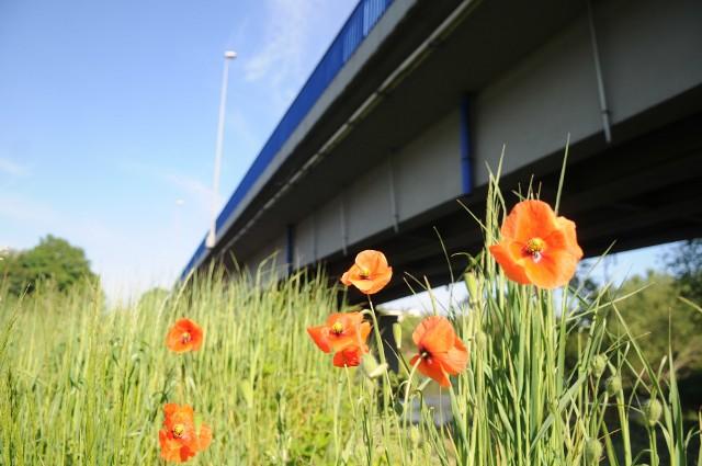 Na początku czerwca 2020 roku na moście w Nowogrodzie Bobrzańskim zostanie wprowadzony ruch wahadłowy.