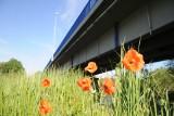 Przez remont mostu w Nowogrodzie Bobrzańskim kierowcy mogą spodziewać się utrudnień? Niebawem zacznie obowiązywać ruch wahadłowy