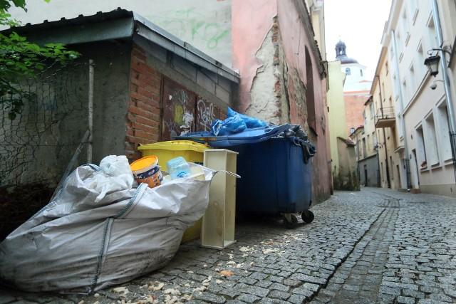 To w jaki sposób zabezpieczane są wiaty śmietnikowe, pojemniki na odpady oraz utrzymywana jest czystość na nieruchomościach, znacząco wpływa na liczebność szczurów - przekonuje ratusz