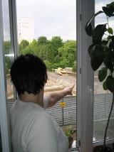Okroili podwórko mieszkańcom, bo budują blok. Lokatorzy z ul. Dąbrowskiego są oburzeni