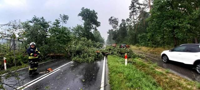 Strażacy usuwali m.in. powalone przez wiatr drzewa oraz zabezpieczali uszkodzone domy