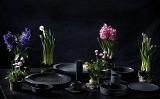Porcelana na… czarno. Ćmielów Design Studio łamie stereotypy i proponuje coś wyjątkowego (ZDJĘCIA)