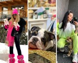 Królowe Życia i uczestnicy GoggleBox pokazują zdjęcia swoich pupili. Pies Dagmary Kaźmierskiej to prawdziwy model!