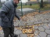 Poznań: Kto ma naprawić zepsute studzienki na ul. Palacza? [ZDJĘCIA]