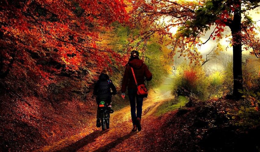 Babie lato w październiku, czyli polska złota jesień daje niesamowity prezent