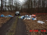 Kilka tysięcy złotych grzywny za porzucenie śmieci w Puszczy Niepołomickiej. Sąd dotkliwie ukarał mieszkańca Krakowa