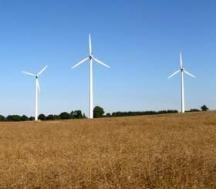Między Obrowcem a Krępną miałoby stanąć około 50 elektrowni wiatrowych. (fot. sxc)